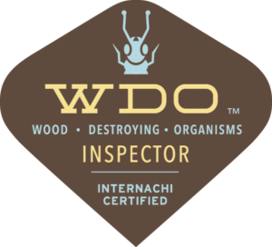 Termite Inspections - Kinston, North Carolina